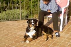 basco_029_bildgry_y_e_y_ndern